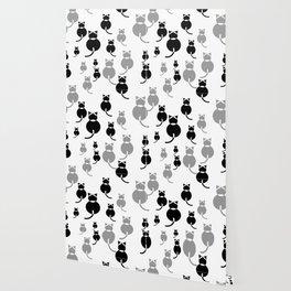 Fat Cats 1 Wallpaper