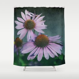 Beautiful summer with pink Echinacea / Daisy flowers Shower Curtain