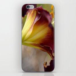 The Backside of Velveteen iPhone Skin