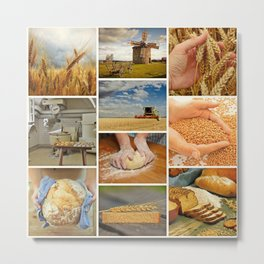 Wheat Bread Collage - Restaurant or Kitchen Decor Metal Print