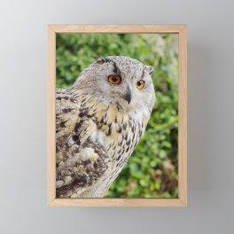Eagle Owl with glowing eyes Framed Mini Art Print
