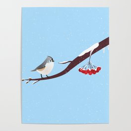 AFE Bird on a branch Poster