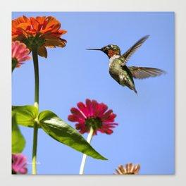 Hummingbird Happiness Canvas Print