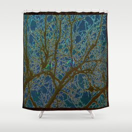 Jeweled Birds In Winter Tree Shower Curtain