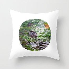 wild stream I Throw Pillow