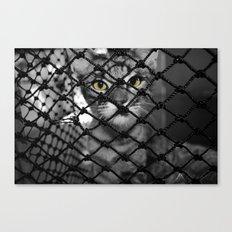 Tiger Inside Canvas Print