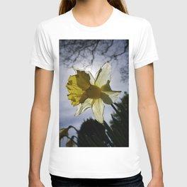 BACK LIT YELLOW DAFFODIL FLOWER T-shirt