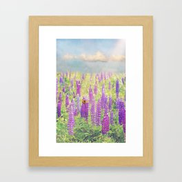 Field of Lupins Framed Art Print