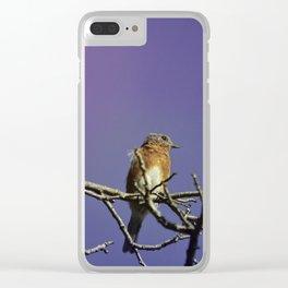 Bluebird Dreams Clear iPhone Case