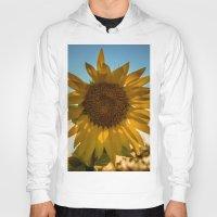 sunflower Hoodies featuring Sunflower by Svetlana Korneliuk
