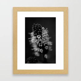 BW Beauty Framed Art Print