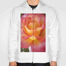 Dew Drop Fire Rose, 2012 Hoody
