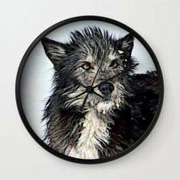 "niknamed-""shaggy"" Wall Clock"