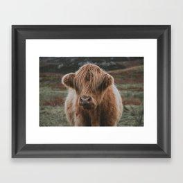 Highland explorer Framed Art Print