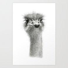 Cute Ostrich Expression SK055 Art Print