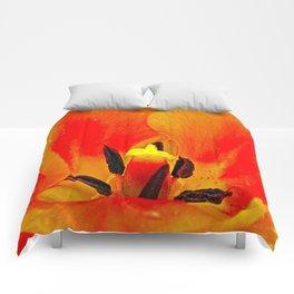 Orange Tulip Comforters