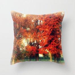 Fall Romance Throw Pillow