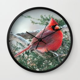 Red on Red (Northern Cardinal) Wall Clock
