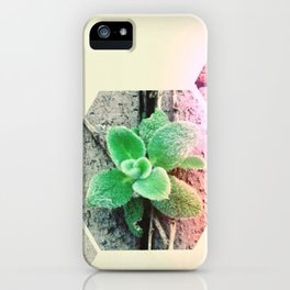 spring has sprung - iPhoneography iPhone Case