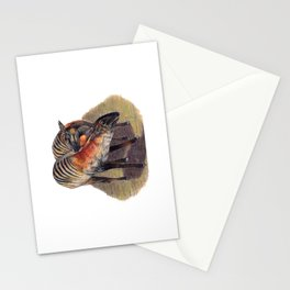 Zebra Duikers Stationery Cards