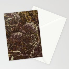 Brown grass Stationery Cards