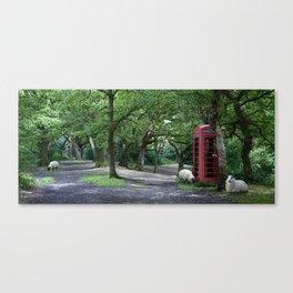 Tranquil Yorkshire Woodland Scene Canvas Print