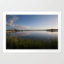 Reeds at the water's edge Art Print