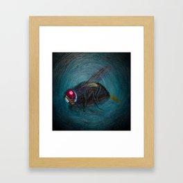 Dead Fly Framed Art Print