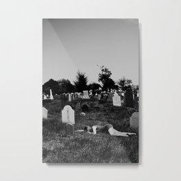 169/365 Metal Print