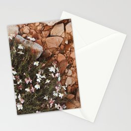 wild flowers in the red sand Stationery Cards