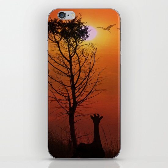 Sunset on the Plaines iPhone & iPod Skin