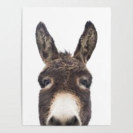 Hey Donkey Poster