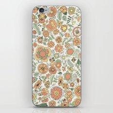 Naranjas iPhone & iPod Skin