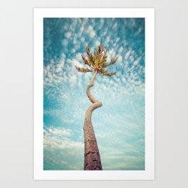 Corkscrew Palm Art Print