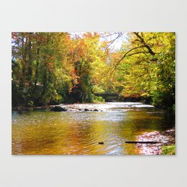 Pebble Creek Canvas Print