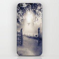 untitled  (colour option) iPhone & iPod Skin