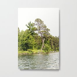 Lake Itasca - Minnesota, USA 13 Metal Print