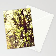 Dapple Stationery Cards