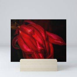 Flower macro Mini Art Print