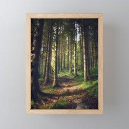 Woodland Fairytail Framed Mini Art Print