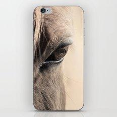 horses eye iPhone & iPod Skin
