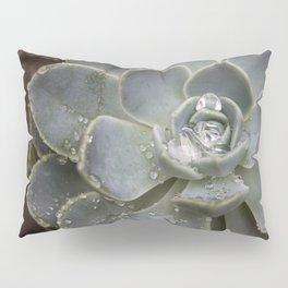 Desert Rose Water Drops Pillow Sham