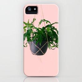 Kangaroo Paw Fern II iPhone Case