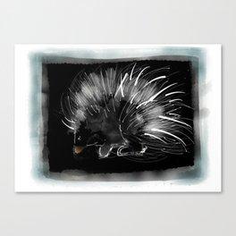 Pip the porcupine Canvas Print
