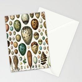 Adolphe Millot - Nouveau Larousse Illustré - Oeufs (Eggs) (1906) Stationery Cards