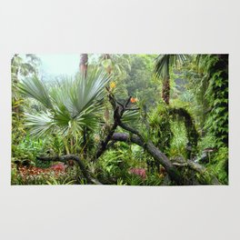 Singapore Botanical Garden 2 Rug