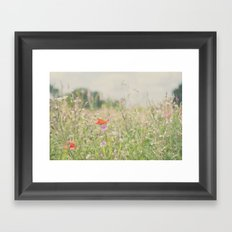 wild flowers ...  Framed Art Print