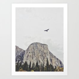 El Cap and the Hawk Art Print