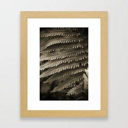 Copper-ized Ferns Fight for Sunshine Framed Art Print