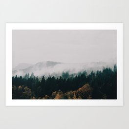 Forest Fog Art Print
